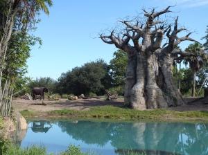 Elephant and tree.