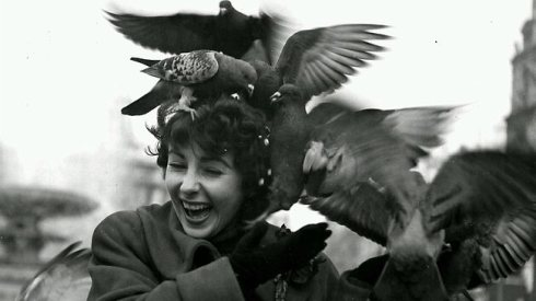 British born American actress Elizabeth Taylor feeding the pigeons in Trafalgar Square in 1948 in London, England. AP photo.