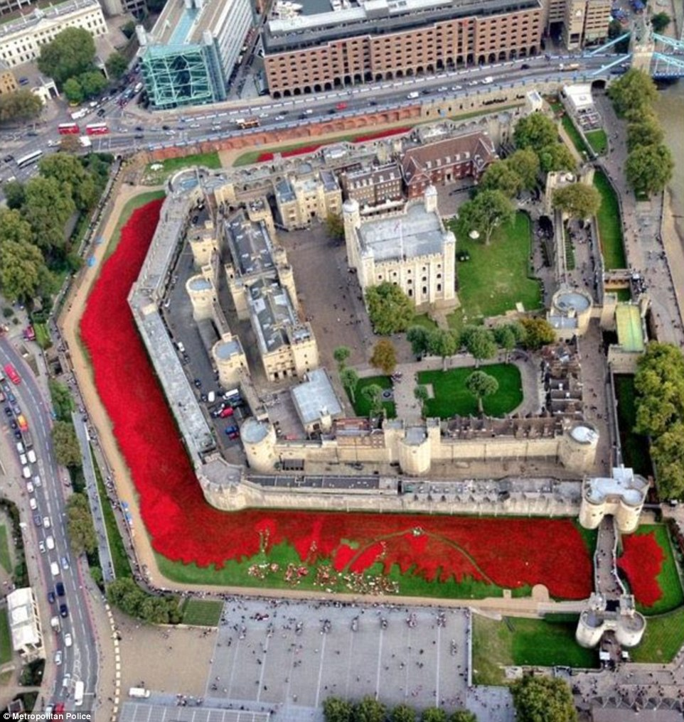 Planting Poppies At The Tower Of London InFlight Movie - Tower of london river of poppies
