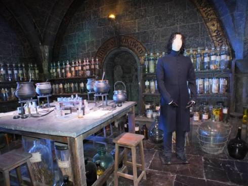 Potions class with Snape costume.