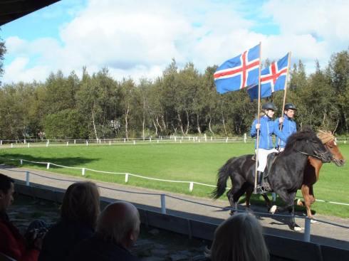 Icelandic horse show.