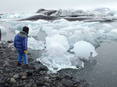 A checking out the bits of ice berg.