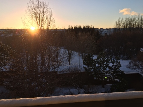 View of the sun in Reykjavik on New Year's Eve right after noon at 12:38pm.